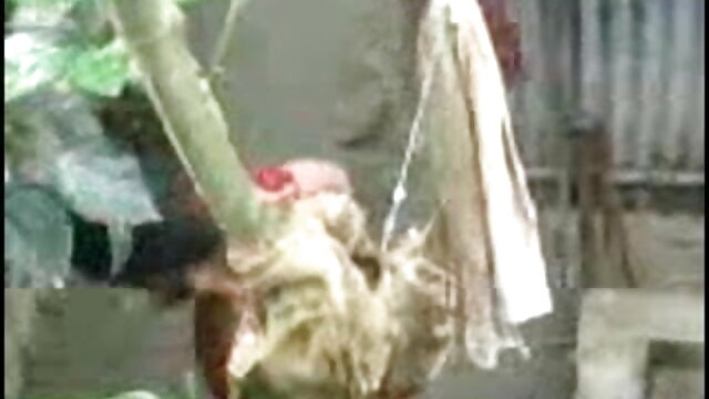 मेहनती सनी लियोन की सेक्सी मूवी दिखाओ जयजयकार मुर्गा लेता है